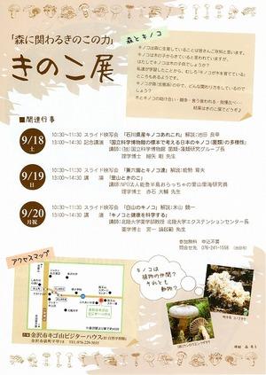 isikawakinoko002.jpg