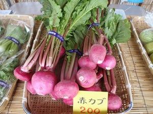 2012NEN11GATSU18NITIKABURA.jpg